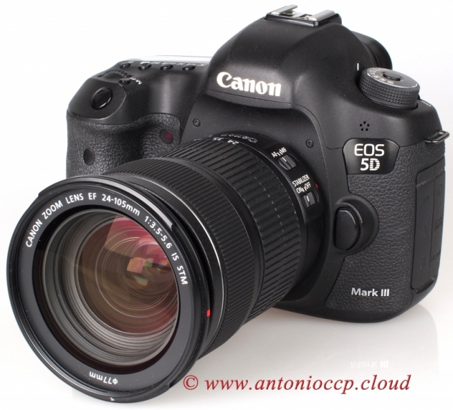 Canon 24-105 IS STM 7